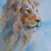 Lion - by Heather Withers